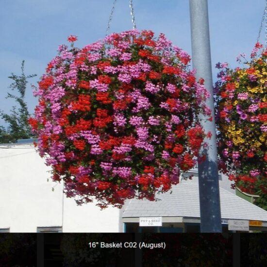 Moss Basket Flower Baskets