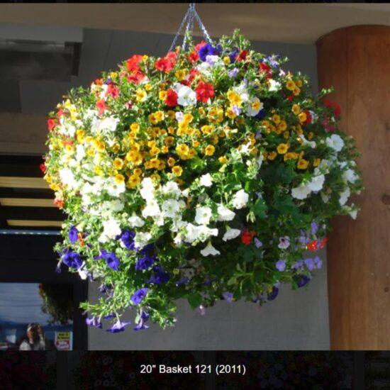 20 inch Flower Baskets