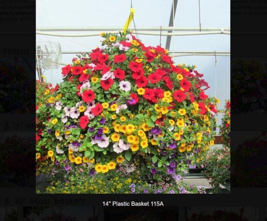 Plastic Flower Baskets