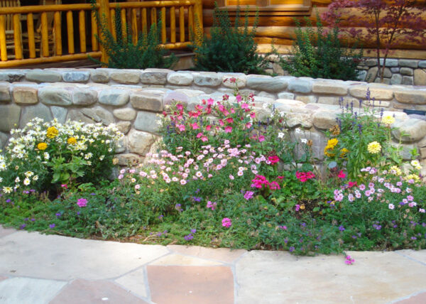 Customize Your Landscape